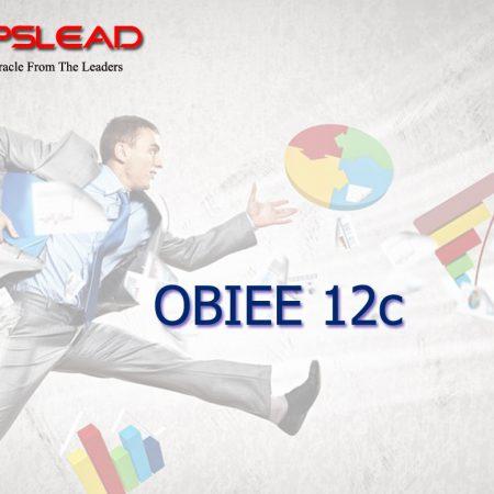 OBIEE 12c Training